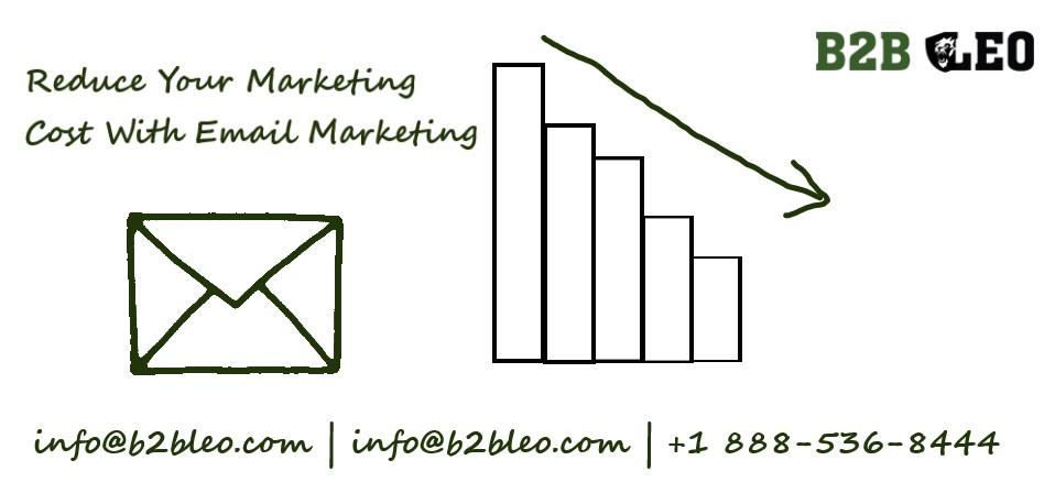 Email Marketing-B2B Leo